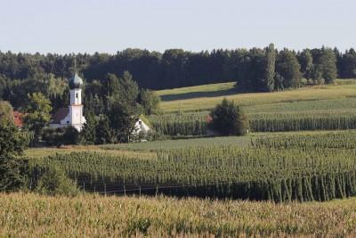 lohwinden hopfenlandschaft landkreis pfaffenhofen