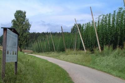 Hopfenlehrpfad Wolnzach Landkreis Pfaffenhofen